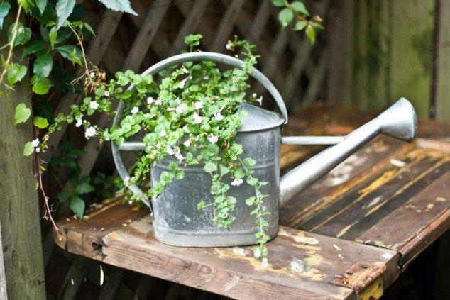 DIY-bricolage-jardim-reciclagem-6